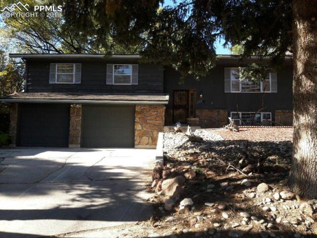 235 Raven Hills Road, Colorado Springs, CO 80919 (#5436392) :: Tommy Daly Home Team