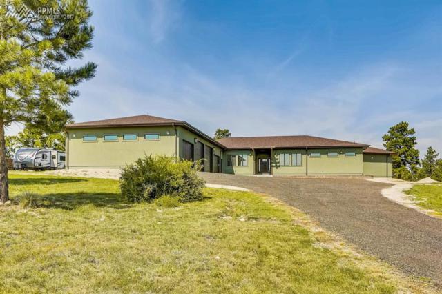 1255 Apex Road, Franktown, CO 80116 (#5439461) :: 8z Real Estate