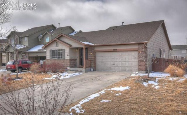 2250 Streambank Drive, Colorado Springs, CO 80951 (#5440561) :: The Peak Properties Group