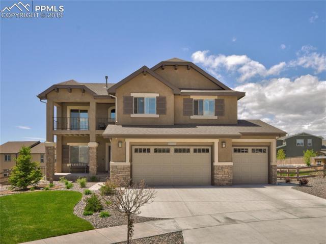 9316 Stanley Park Drive, Colorado Springs, CO 80924 (#5442325) :: The Treasure Davis Team