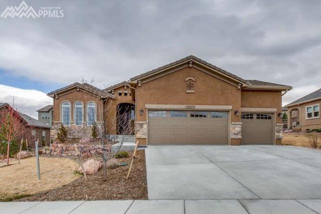 13075 Duckhorn Court, Colorado Springs, CO 80921 (#5442539) :: Action Team Realty