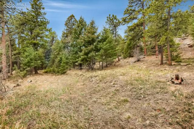 8537 Doubleheader Ranch Road, Morrison, CO 80465 (#5443264) :: 8z Real Estate
