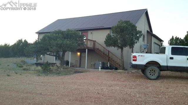 2642 County 521 Road, Walsenburg, CO 81089 (#5443305) :: Action Team Realty