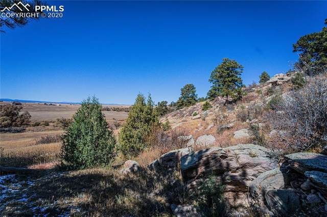 11535 Cave Spring Road, Franktown, CO 80116 (#5444169) :: Fisk Team, RE/MAX Properties, Inc.