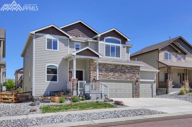 906 Pistol River Way, Colorado Springs, CO 80921 (#5445316) :: The Treasure Davis Team