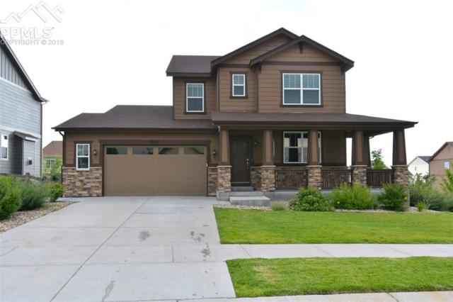 8217 Knotty Alder Court, Colorado Springs, CO 80927 (#5445584) :: The Peak Properties Group