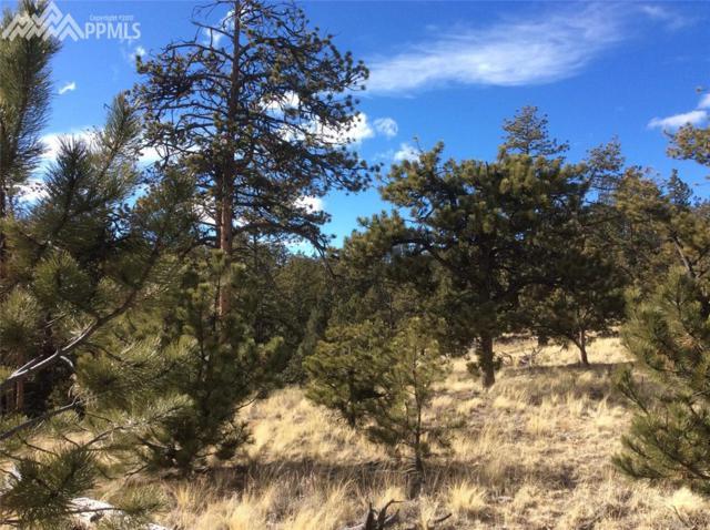 125 Black Mesa Circle, Florissant, CO 80816 (#5446425) :: The Treasure Davis Team