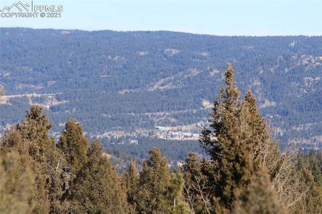 238 Skyline Drive, Woodland Park, CO 80863 (#5448210) :: The Cutting Edge, Realtors
