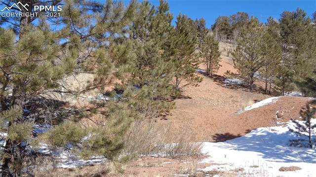 5884 Teller 1 Road, Cripple Creek, CO 80813 (#5449067) :: The Harling Team @ HomeSmart