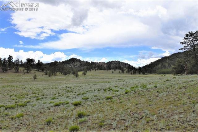 Lot 123 Antelope Lane, Guffey, CO 80820 (#5455319) :: Fisk Team, RE/MAX Properties, Inc.
