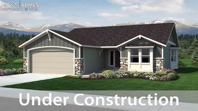 2607 Shawnee Drive, Colorado Springs, CO 80922 (#5455887) :: 8z Real Estate