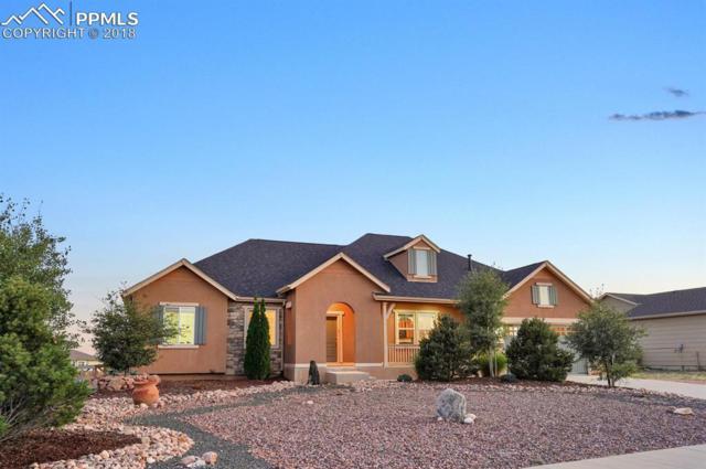 7494 Antelope Meadows Circle, Peyton, CO 80831 (#5457171) :: The Peak Properties Group