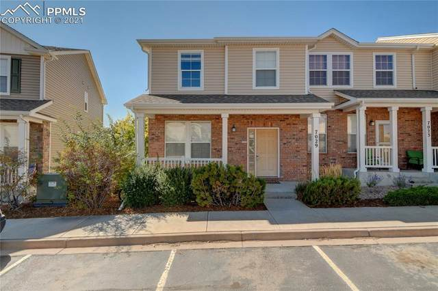 7029 Yampa River Heights, Fountain, CO 80817 (#5458185) :: 8z Real Estate