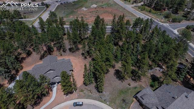 640 Chipmunk Drive, Woodland Park, CO 80863 (#5458244) :: The Scott Futa Home Team
