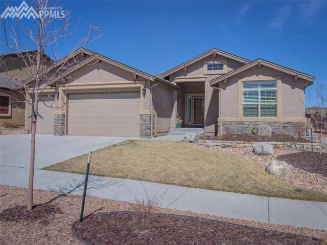 13241 Dominus Way, Colorado Springs, CO 80921 (#5458989) :: Action Team Realty