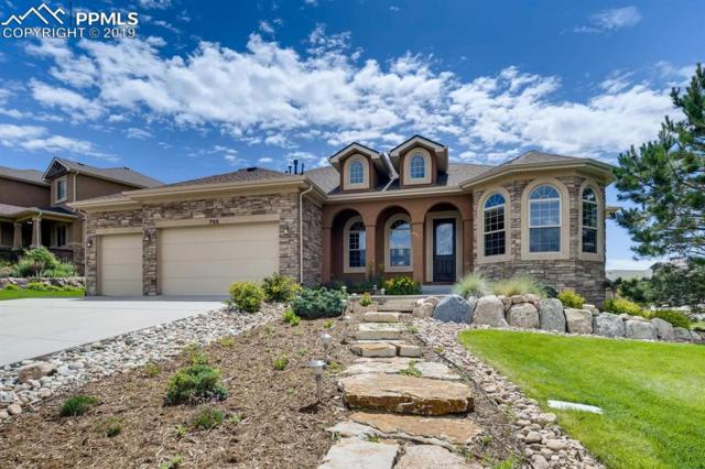 705 Black Arrow Drive, Colorado Springs, CO 80921 (#5459022) :: The Peak Properties Group