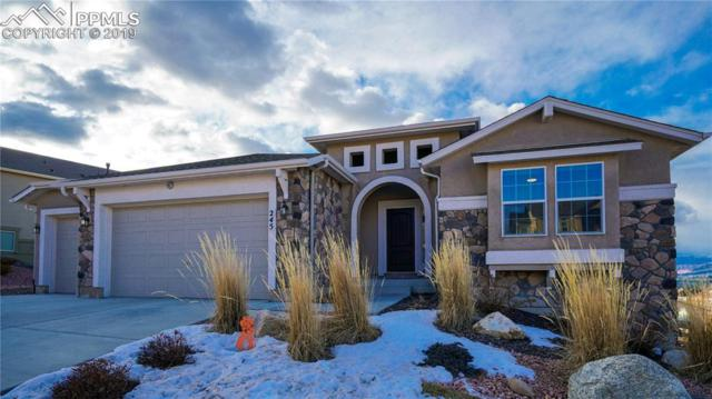 245 Reading Way, Monument, CO 80132 (#5459414) :: The Peak Properties Group