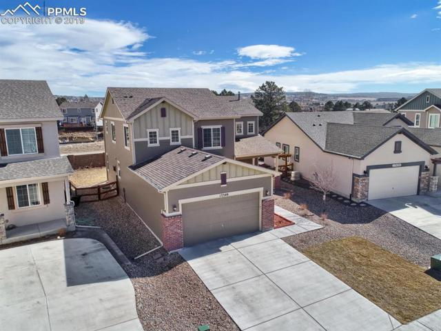 17549 Leisure Lake Drive, Monument, CO 80132 (#5461215) :: CC Signature Group