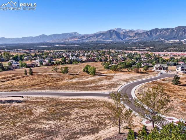 385 Mission Hill Way, Colorado Springs, CO 80921 (#5463522) :: The Kibler Group