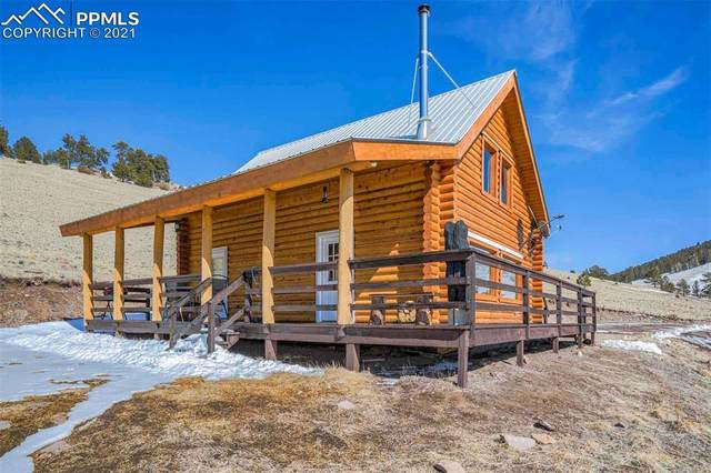 501 Greta Valley Road, Guffey, CO 80820 (#5468168) :: Fisk Team, RE/MAX Properties, Inc.