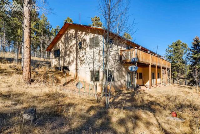 29 Colt Circle, Florissant, CO 80816 (#5470246) :: The Peak Properties Group