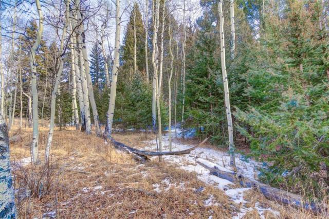 100 Idlewild Drive, Cripple Creek, CO 80813 (#5470864) :: 8z Real Estate