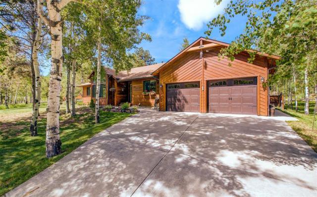 1100 Wagon Place, Woodland Park, CO 80863 (#5474660) :: Jason Daniels & Associates at RE/MAX Millennium