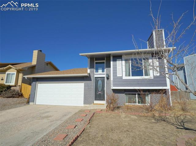 4490 Allison Drive, Colorado Springs, CO 80916 (#5474942) :: 8z Real Estate