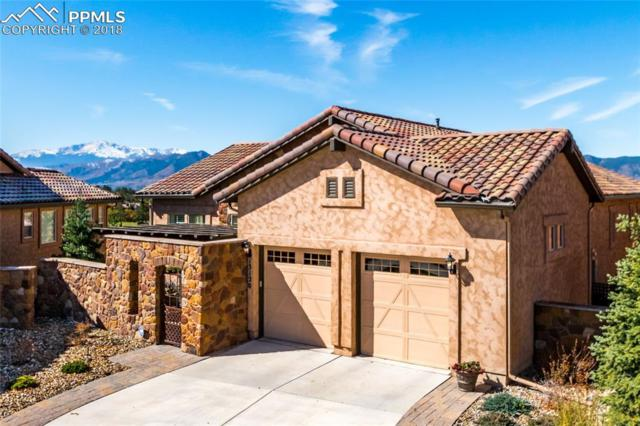 13120 Thumbprint Court, Colorado Springs, CO 80921 (#5478105) :: Harling Real Estate