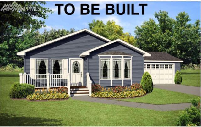 66 Gerka Lane, Florissant, CO 80816 (#5478851) :: 8z Real Estate