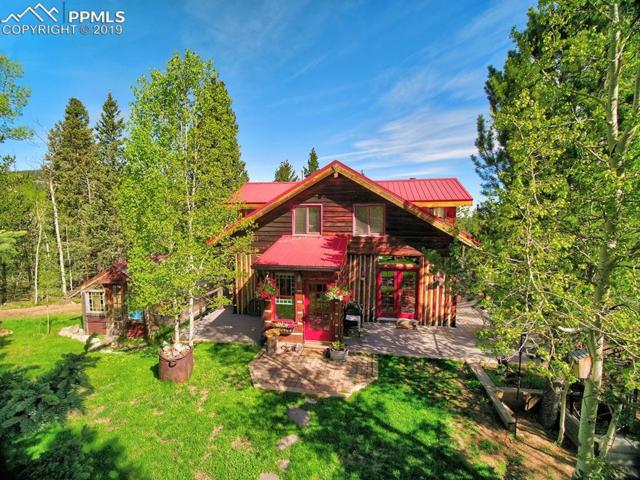 10587 S Highway 67 Highway, Cripple Creek, CO 80816 (#5482611) :: The Treasure Davis Team