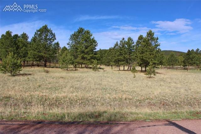 1270 Woodland Valley Ranch Drive, Woodland Park, CO 80863 (#5483467) :: 8z Real Estate