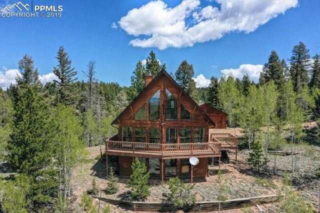 175 Needle Creek Road, Divide, CO 80814 (#5485768) :: Action Team Realty
