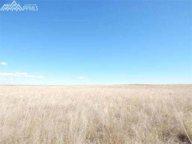 000 County 153 Road, Agate, CO 80101 (#5487191) :: 8z Real Estate