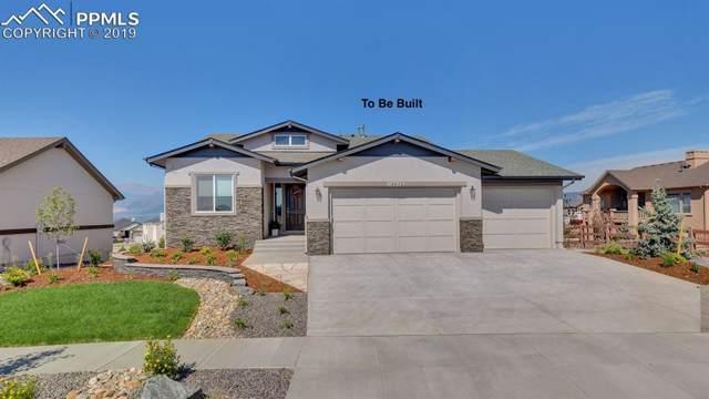 14330 Spyglass Hill Place, Colorado Springs, CO 80921 (#5493108) :: The Kibler Group