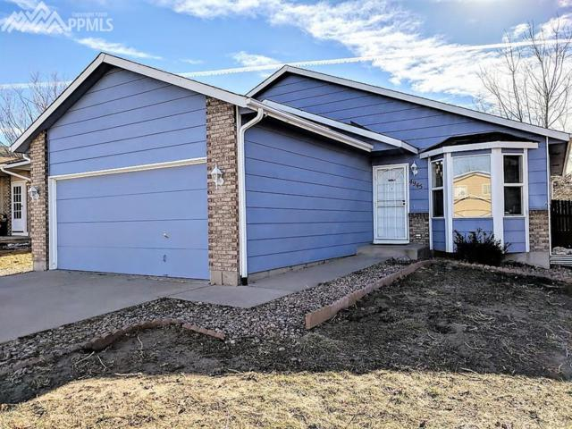 4945 Witches Hollow Lane, Colorado Springs, CO 80911 (#5494035) :: The Hunstiger Team