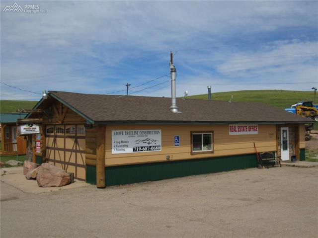 12625 W Highway 24 Highway, Divide, CO 80814 (#5497209) :: Colorado Home Finder Realty