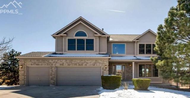 15295 Jessie Drive, Colorado Springs, CO 80921 (#5499520) :: The Peak Properties Group