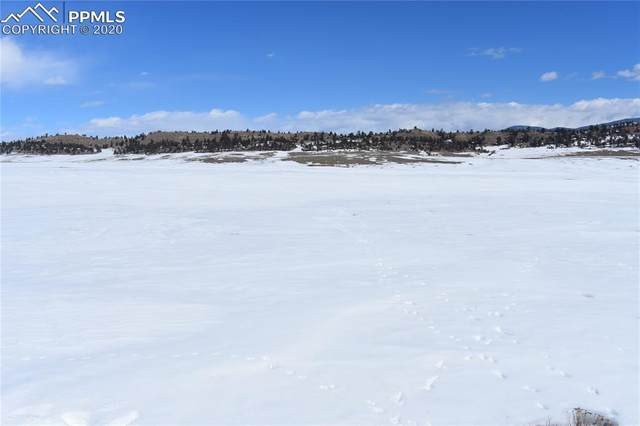 1251 Summit Road, Hartsel, CO 80449 (#5501034) :: 8z Real Estate