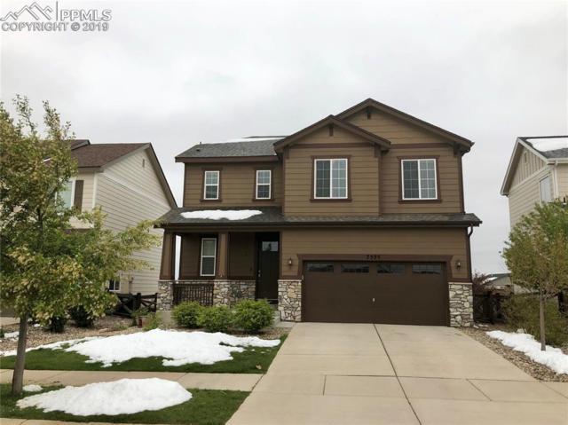 7595 Buckeye Tree Lane, Colorado Springs, CO 80927 (#5506240) :: Venterra Real Estate LLC