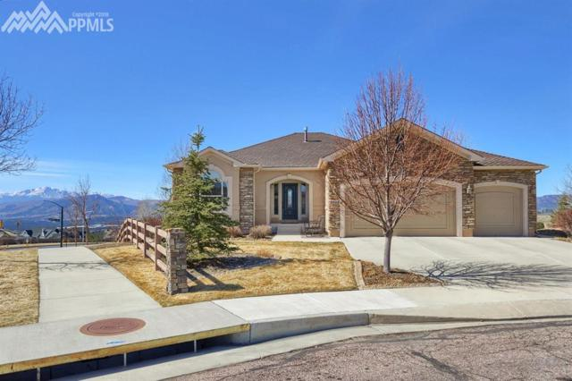 13824 Windy Oaks Road, Colorado Springs, CO 80921 (#5506820) :: Action Team Realty