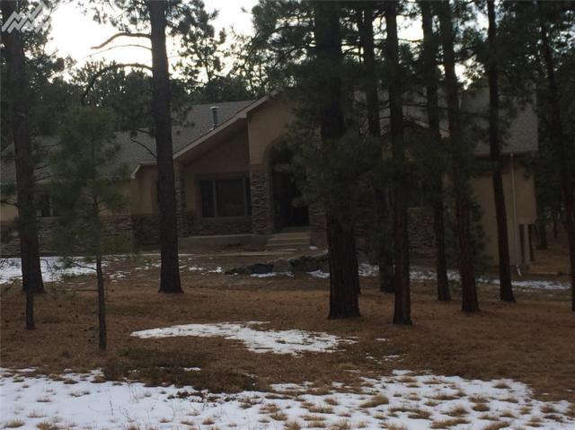 19620 Lockridge Drive, Colorado Springs, CO 80908 (#5507060) :: 8z Real Estate