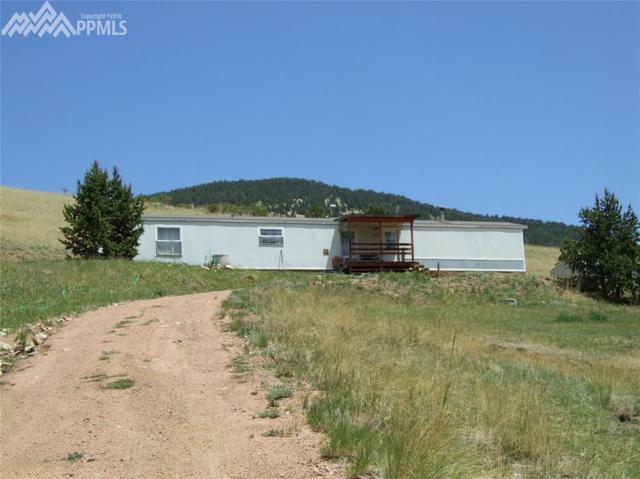 47 Monarch Drive, Cripple Creek, CO 80813 (#5514387) :: The Peak Properties Group