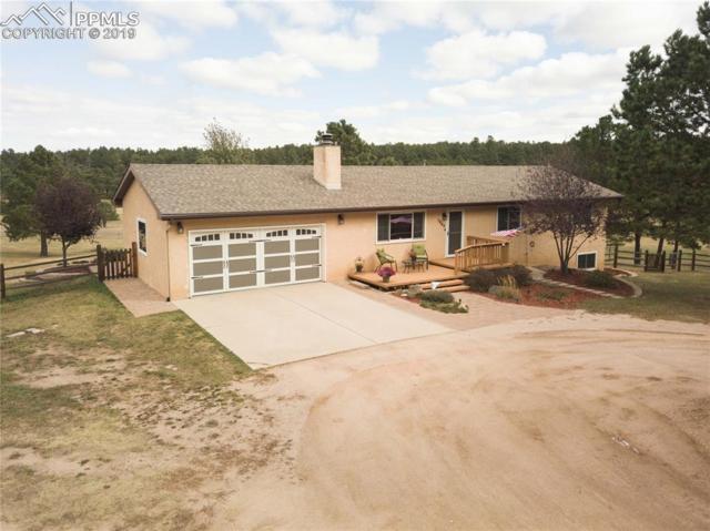 7860 Cyprus Road, Colorado Springs, CO 80908 (#5522755) :: 8z Real Estate