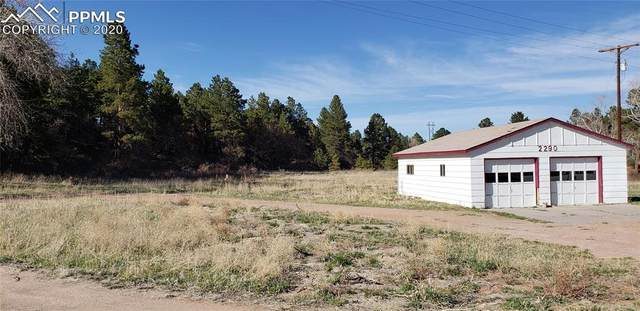 2290 Old Ranch Road, Colorado Springs, CO 80908 (#5523900) :: Colorado Home Finder Realty