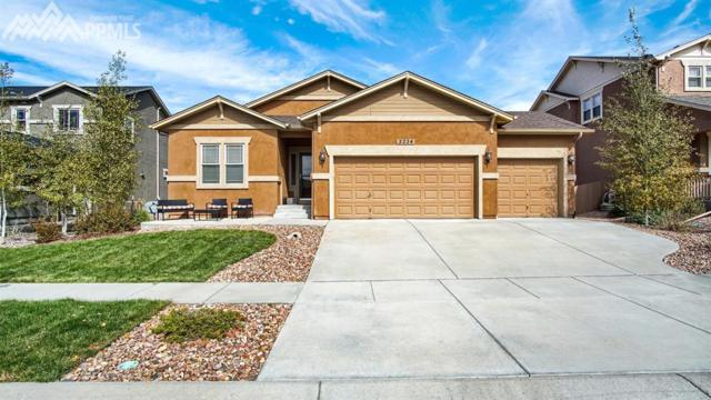 5224 Imogene Pass Place, Colorado Springs, CO 80924 (#5524130) :: Jason Daniels & Associates at RE/MAX Millennium