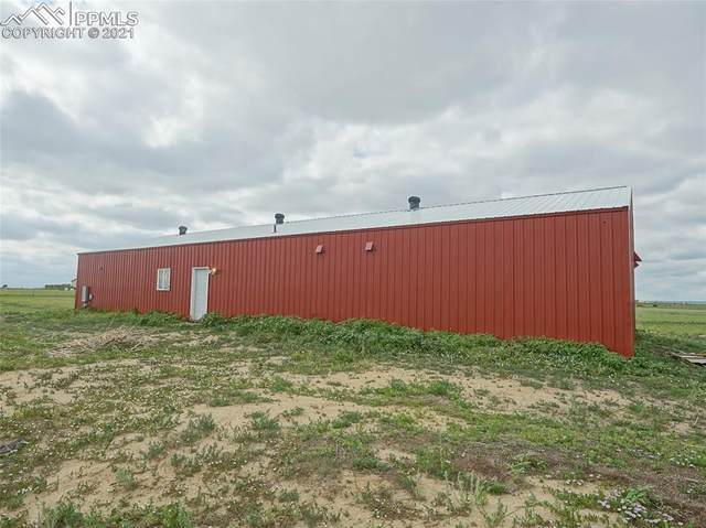 2145 Awesome View, Yoder, CO 80864 (#5524792) :: Tommy Daly Home Team