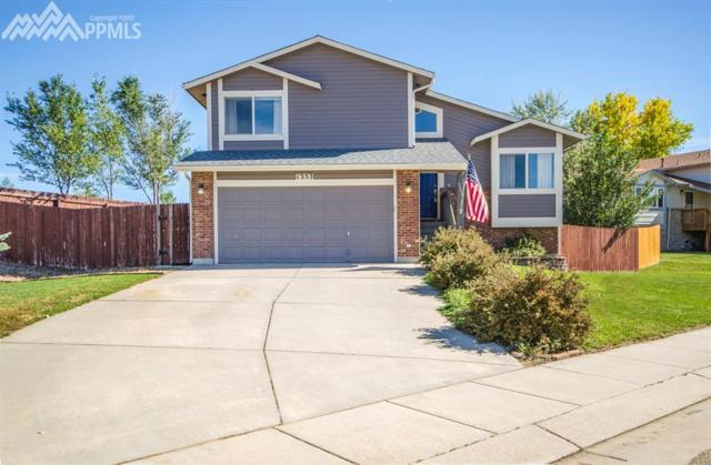 1353 Marsh Hawk Drive, Colorado Springs, CO 80911 (#5528885) :: 8z Real Estate