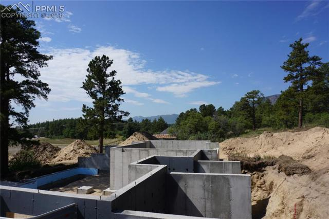 601 Pioneer Haven Point, Palmer Lake, CO 80133 (#5530123) :: The Treasure Davis Team