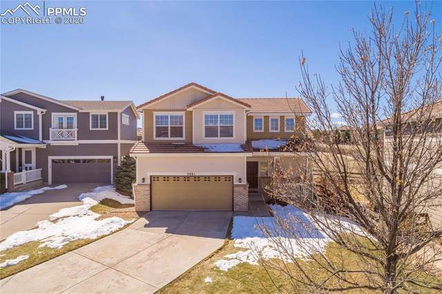 3981 Brushwood Way, Castle Rock, CO 80109 (#5530317) :: Action Team Realty